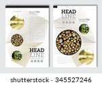 business brochure design... | Shutterstock .eps vector #345527246
