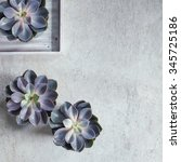 modern  minimalist composition... | Shutterstock . vector #345725186