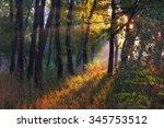 autumn morning | Shutterstock . vector #345753512