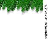 fir branch on white background. ... | Shutterstock . vector #345923576