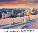 colorful winter scene in the... | Shutterstock . vector #345937496