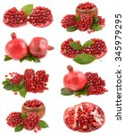 pomegranate | Shutterstock . vector #345979295