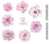 illustration of beautiful pink... | Shutterstock . vector #346008182