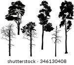 illustration with pine... | Shutterstock .eps vector #346130408