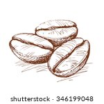 painted coffee beans  sketch ... | Shutterstock .eps vector #346199048
