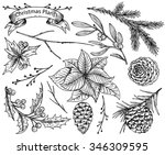 set of  hand drawn winter... | Shutterstock .eps vector #346309595