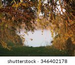 lake behind the tree | Shutterstock . vector #346402178