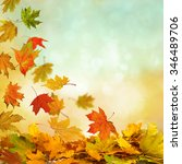 Pile Of Autumn Leaves On Natur...