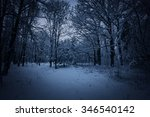 View Of Night Winter Park With...