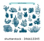 underwater set   silhouette of... | Shutterstock .eps vector #346613345