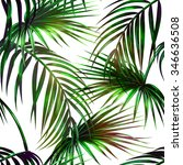 tropical palm leaves seamless... | Shutterstock . vector #346636508