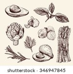 vector hand drawn food sketch | Shutterstock .eps vector #346947845