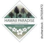 hawaii paradise. summer travel... | Shutterstock .eps vector #347035472