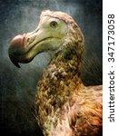 Small photo of A dodo bird closeup portrait against an artistic background