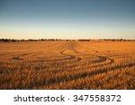 rural scene in south australia  ... | Shutterstock . vector #347558372