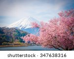 Mount Fuji And Sakura In Sprin...