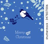 christmas  card with bullfinch... | Shutterstock .eps vector #347837006