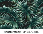 tropical palm leaves seamless... | Shutterstock .eps vector #347873486