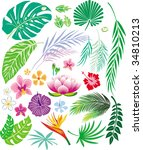 tropical leaf and flowers | Shutterstock .eps vector #34810213