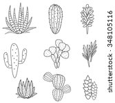 succulents cacti plant vector... | Shutterstock .eps vector #348105116