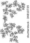 refined floral vignette. eau... | Shutterstock .eps vector #34810735
