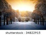 Beautiful Winter In Estate...