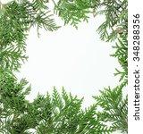 ever green fir tree decoration... | Shutterstock . vector #348288356