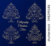 set of calligraphy christmas... | Shutterstock .eps vector #348290186