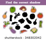 Find The Correct Shadow ...