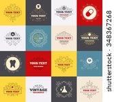 vintage frames  labels....   Shutterstock . vector #348367268