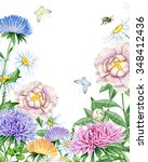 watercolor garden with asters ... | Shutterstock . vector #348412436