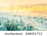 Beautiful Winter Nature With...