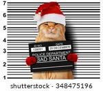 cat holding a banner offender... | Shutterstock . vector #348475196