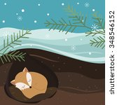 let it snow. fox sleeping in a... | Shutterstock .eps vector #348546152