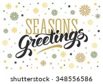 seasons greetings. vintage card ... | Shutterstock .eps vector #348556586