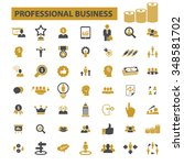 professional business  money ... | Shutterstock .eps vector #348581702