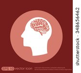 vector icon head with brain. ... | Shutterstock .eps vector #348656462