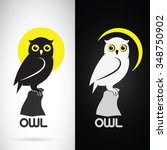 vector image of an owl design... | Shutterstock .eps vector #348750902