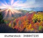 In The Carpathians  Golden...