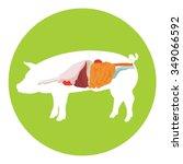 vector pig anatomy. digestive... | Shutterstock .eps vector #349066592