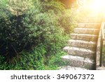stone staircase in the green... | Shutterstock . vector #349067372