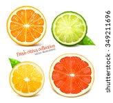 fresh citrus fruits. vector... | Shutterstock .eps vector #349211696