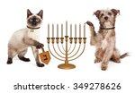 Stock photo cute puppy dog lighting a menorah candelabrum and a kitten spinning a wooden dreidel in celebration 349278626