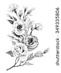 hand drawing flower isolated on ... | Shutterstock . vector #349335806