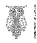 owl bird. black white hand... | Shutterstock .eps vector #349626656