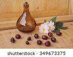 medicinal plants   eglantine | Shutterstock . vector #349673375