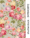 colorful rosebush. flowers and... | Shutterstock . vector #349843892