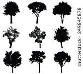 set of nine trees vector... | Shutterstock .eps vector #349845878