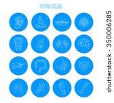medical polygonal symbols of...   Shutterstock .eps vector #350006285