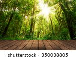 wood floor textured in on the... | Shutterstock . vector #350038805